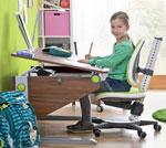 Комплект Moll Winner Comfort Walnut со стулом Maximo и лампой Flexlight